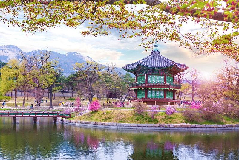 Mùa cao điểm du lịch, xin visa Hàn Quốc có thể mất từ 15-20 ngày