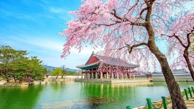 Du lịch Hàn Quốc nên mua gì về làm quà?