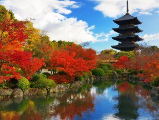 du lịch Nhật Bản mua gì
