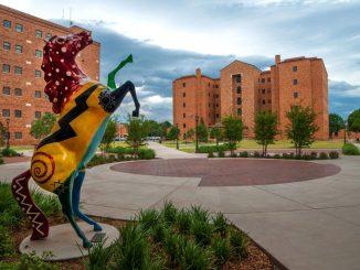 Đại học Midwestern State