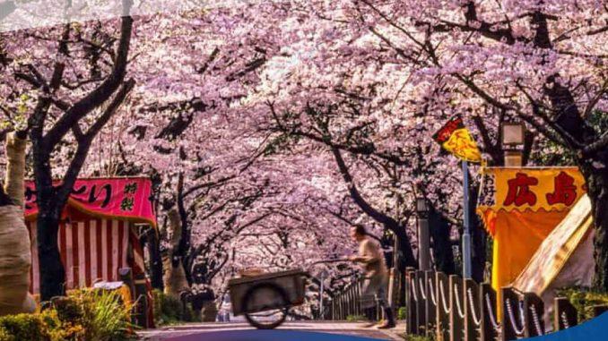 quy trình xin visa du lịch Nhật Bản