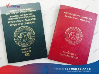 How to apply for Vietnam visa in Cameroon? - Visa Vietnam au Cameroun