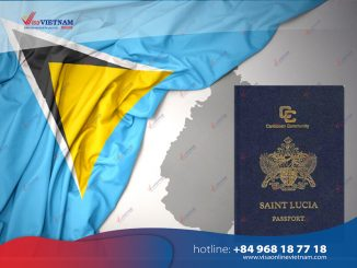 How many ways to apply for Vietnam visa in Saint Lucia?